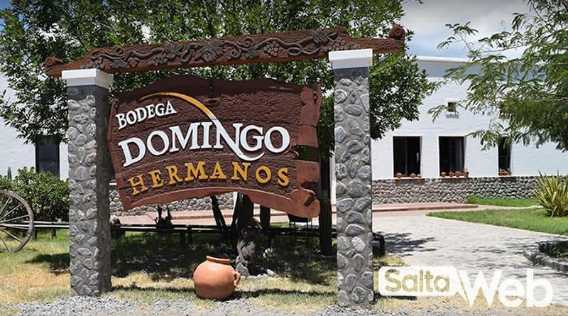 Bodega Domingo Hermanos - Cafayate
