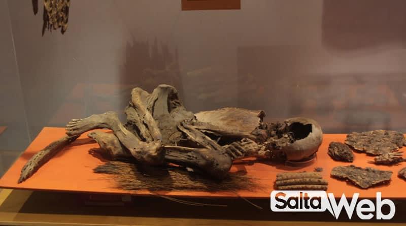 fosiles aborigenes museo de cachi
